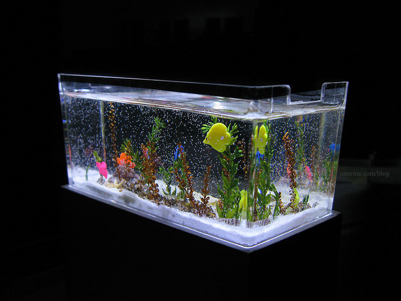 Saltwater fish tank ideas saltwater aquarium design for Saltwater fish tank kit